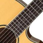 gitara elektryczno-klasyczna