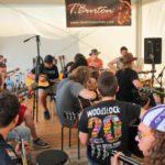 Frikolekcje 20016 Woodstock Festiwal 33