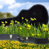 dobry futerał do gitary