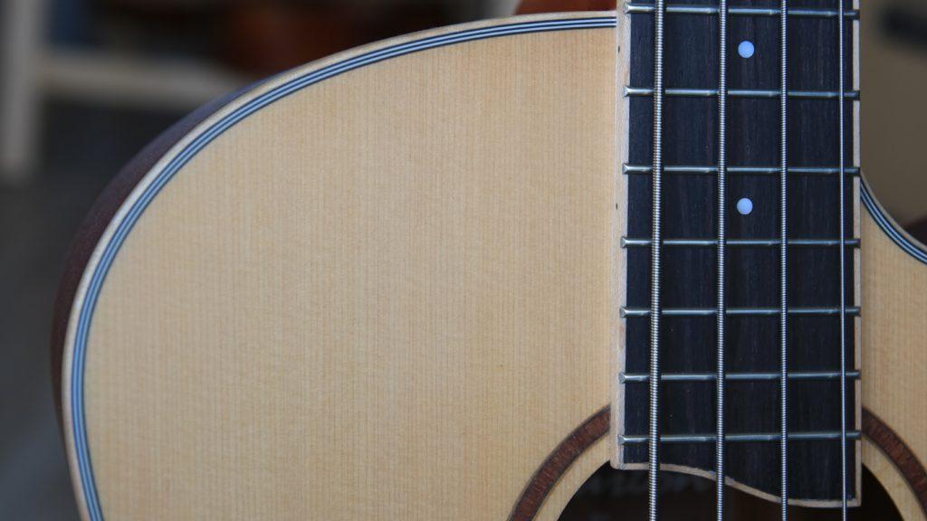 mahoń pudło rezonansowe gitara akustyczna basowa bas akustyczny acoustic guitar bass t.burton